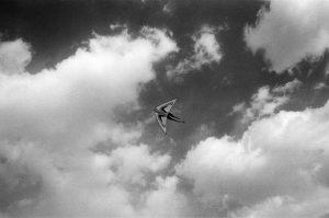 Kite Runner 20075 300x199 - Kite Runner 2007