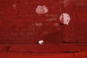 Rabbit B Size45cm30cm Year2014 Edition 5 300x200 - RED DREAM Photos